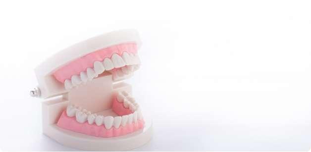 入れ歯の取り違え防止のためのお名前入れ